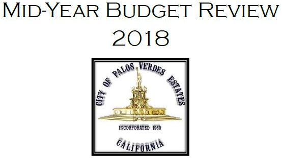 Mid-year budget review